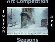 Seasons Art Competition - snowstorm photograph