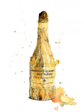 Colourful bottle illustration in watercolour and pencil