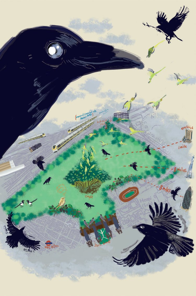 """As the Crow Flies"" London Transport Museum Prize for Illustration shortlisted for Exhibition ""Places and Spaces"" Looks at Wormwood Scrubbs"