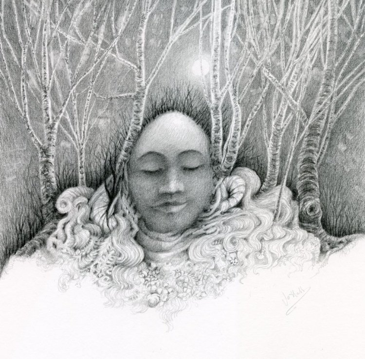 Forest Dreaming, graphite pencil drawing