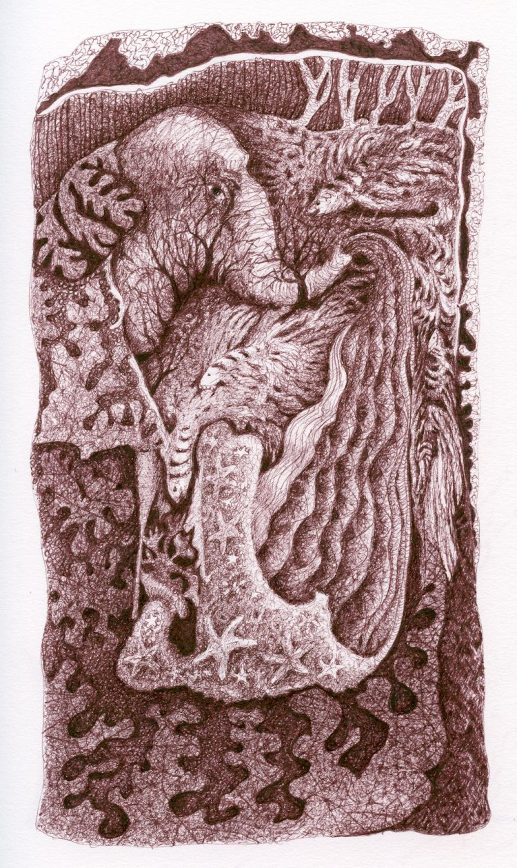 Reephant: a fantasy of elephant and reef, sepia ink