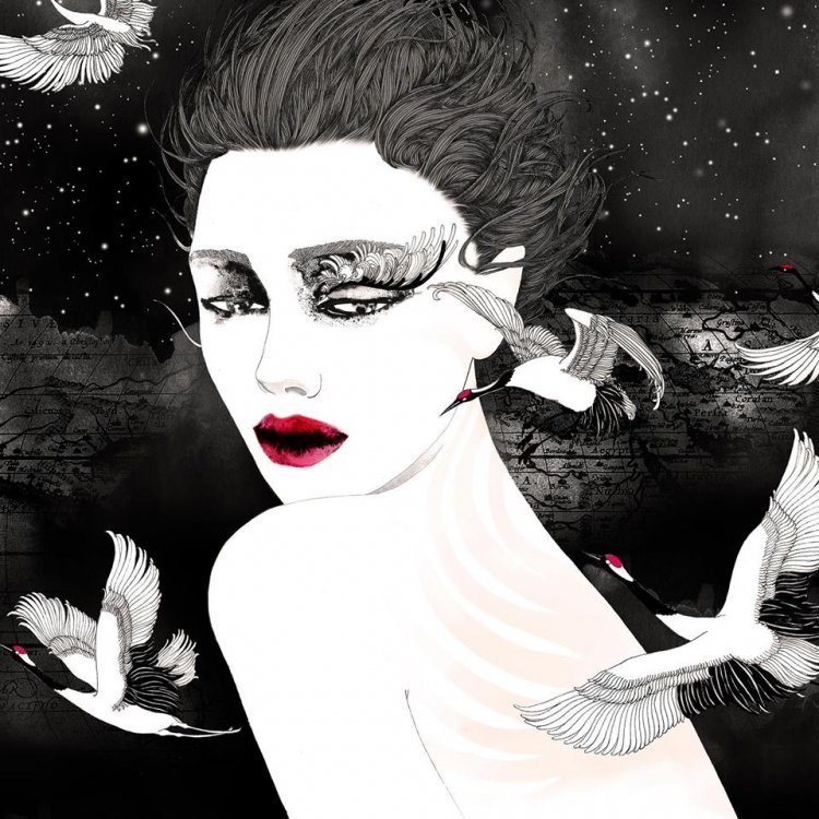 Black and white refined Fashion illustration for Italian Luxury Lingerie