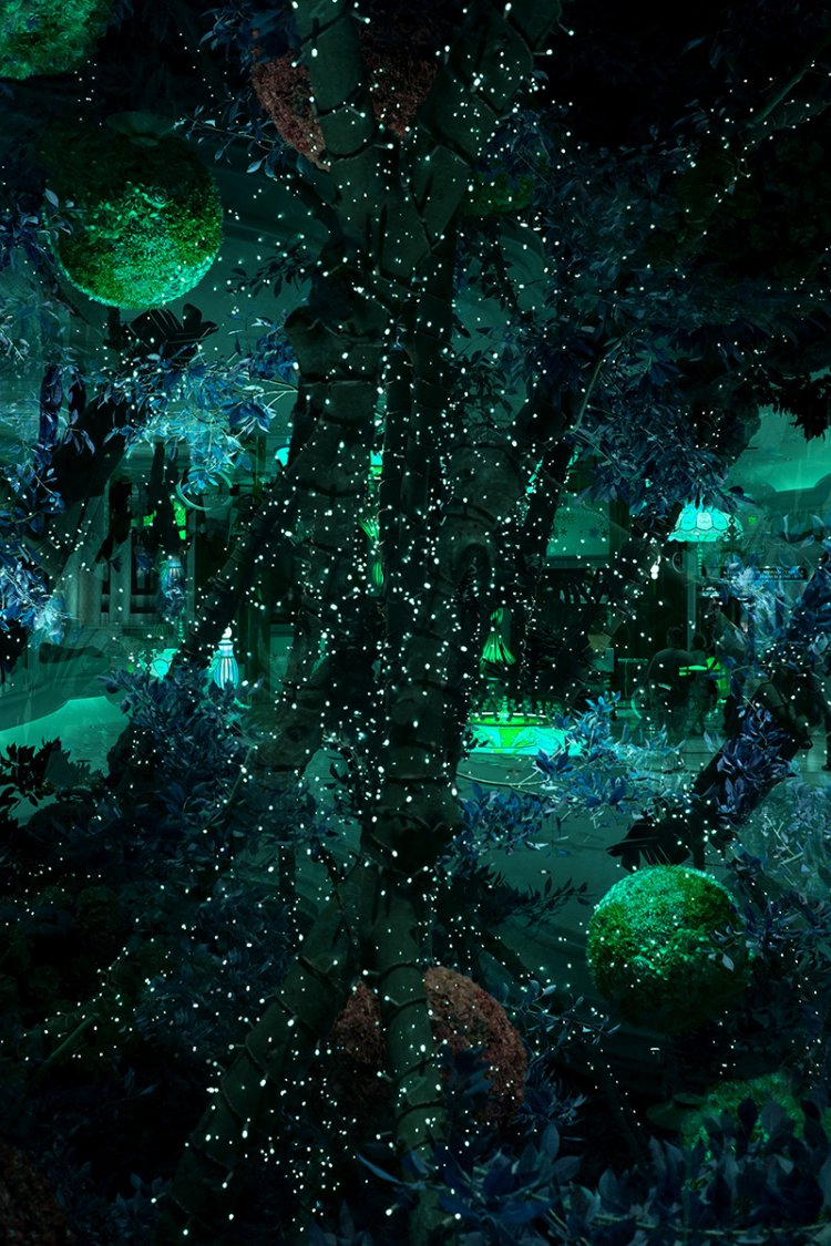 multi exposure, garden at night, stars, dark green, mystical, magical